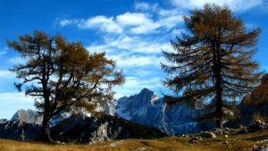 Pogled iz slemena - Festival Brati gore